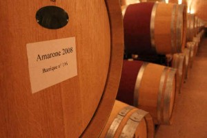 Amarone-Barrel