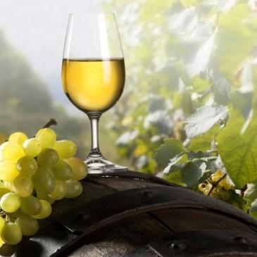Chardonnay – ett vin som kräver rätt mat?